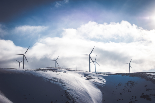 OEM wind turbines farm in winter